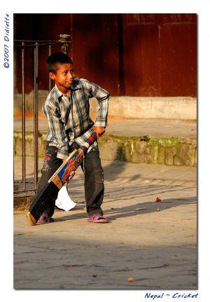 c11-Cricket.jpg