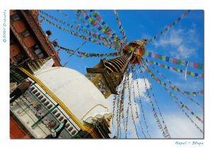 c73-Stupa.jpg